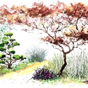 Le jardin Zen